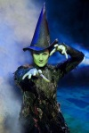 Review: Wicked, the musical spectacular comes to Dublin